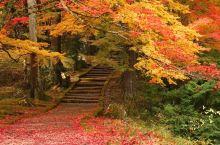 赏枫秘境龙稳寺的秋色!