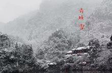 《咏雪》 忽闻户外人声沸,皆笑凛冬雪已至; 霏霏细雨随风舞,无枝无叶花空飘; 宁为佳人鬓边蕊,莫叫此