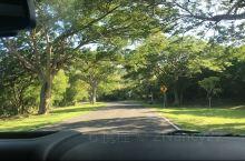 塞班岛的绿野仙踪