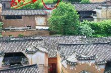 浙江古村落,村口还有一颗网红树