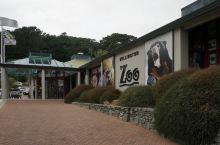 惠灵顿动物园
