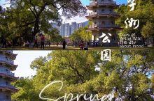 十八线的小城市,逛公园是悠闲生活的姿态
