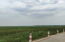 中国最美水上公路,永吴公路 冬季有候鸟