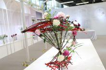 2021崇明花卉展