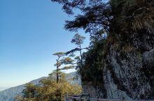 位于韶关和湖南交界处的莽山国家森林公园,一年四季都吸引了众多国内外游客前来一睹风采,特别是下雪天欣赏