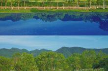 惠州民宿|无边泳池看百亩稻花香!绝了