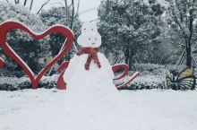山上的雪景,不一样的体验