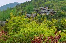 今日分享 潭溪山生态木屋