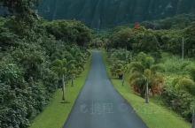 美麗的夏威夷,想念