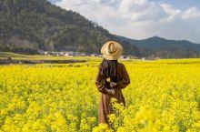 《庆余年》取景地|中国最大的油菜花海