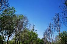 东小口休公园