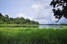 文莱国家公园
