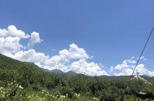 蓝天白云绿草黄花太美了……这是周末果洛草原的一景