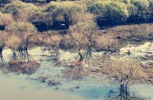 美丽的敦化有个美丽的雁鸣湖