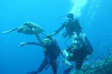 美娜多真的是很美。潜水美食一个不能落