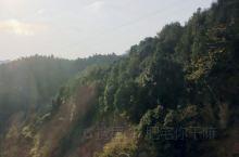 大山里面通高铁,不尽快,而且风景好