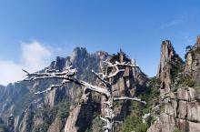 """江西旅游以山出名,尤以""""三清山""""山色最为自然、秀美、奇特和壮丽!这可以从很多非专业的普通人拍摄的照片"""