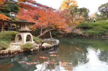 八芳园美丽秋色!