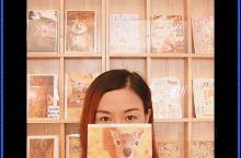 惠州旅行 给未来的自己寄一封信