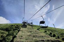 伊豆大室山,一座休眠小火山,坐缆车登顶之后可以绕火山口散步,一圈大约半个小时,海景山景融为一体,周边