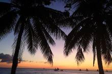 长滩岛的黄昏,安静的海面,椰林落日余晖,相比白天海滩的热情洋溢,更有一番味道。