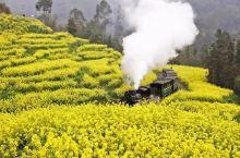 #吴导带您看四川#开往春天的蒸汽火车