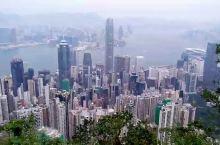 太平山顶徒步至薄扶林水塘,瞰维港壮丽风光