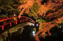 伊香保温泉「河鹿桥」的绝美红叶景色
