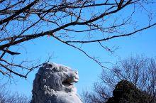 乾陵是唐高宗李治(628—683)与中国