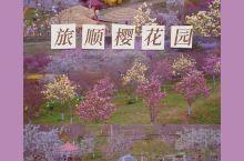 花间世界 大连旅顺二〇三樱花园