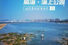 【威海海岸巡礼】海上公园:在市中心赶海!