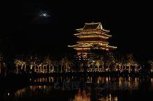 不知乘月几人归,落月摇情满江树。