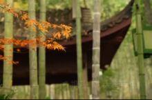 杭州四季之秋色