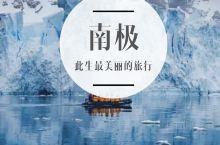 去南极旅行是一种怎样的体验?