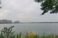 美丽的西双湖 我的家乡。比西湖还大,没有西湖那么出名,但是有西湖的美,难得没有被污染,这么大的湖面,