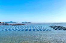 霞浦,东壁村的滩涂