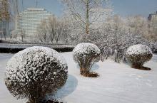 瑞雪迎春到