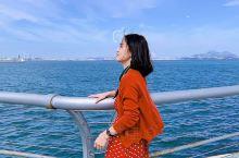 东港音乐喷泉广场|在蓝天绿水里邂逅海鸥