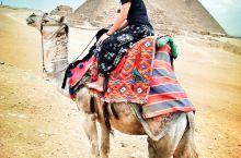 赤脚穿越埃及大金字塔及狮身人面像