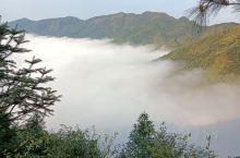 洞口县石柱镇七岭村的云海和竹海