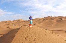 在沙漠中驰骋傲游
