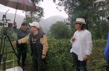 音乐电影《龙州媚》MV在龙州八角乡的茶山拍摄,用拍电影的器材来拍的哦。