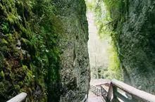 离成都最近的景区要数孟屯河谷高桥沟了,那里空气新鲜阳光明媚,高山流水遇知音,青山绿水共为邻,最适合自