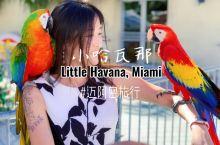 迈阿密旅行-小哈瓦那