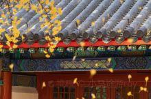 这几个地方人少景美,你心动了么? 十一过后中国大部分地区的秋,也就真正来临了,这些一不小心美成仙境的