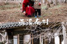 带娃旅行|黄山脚下原始的西溪南村