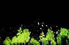 遇见初夏的平遥古城 夜景很美