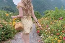 阳朔民宿旅行 遇龙河徒步道花花很漂亮 遇龙河两边的花花很漂亮
