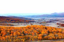 来到乌兰布统,站在横山观看秋天的景色