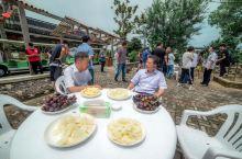 【马桥采摘,鲜美桃汁化解驾车疲劳】过了江阴大桥,来到靖江马桥已是中午。知道马桥有个漂亮的农耕园,但不